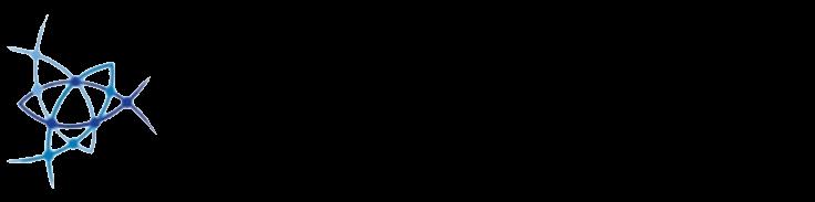 Nonlinear Dynamics Logo